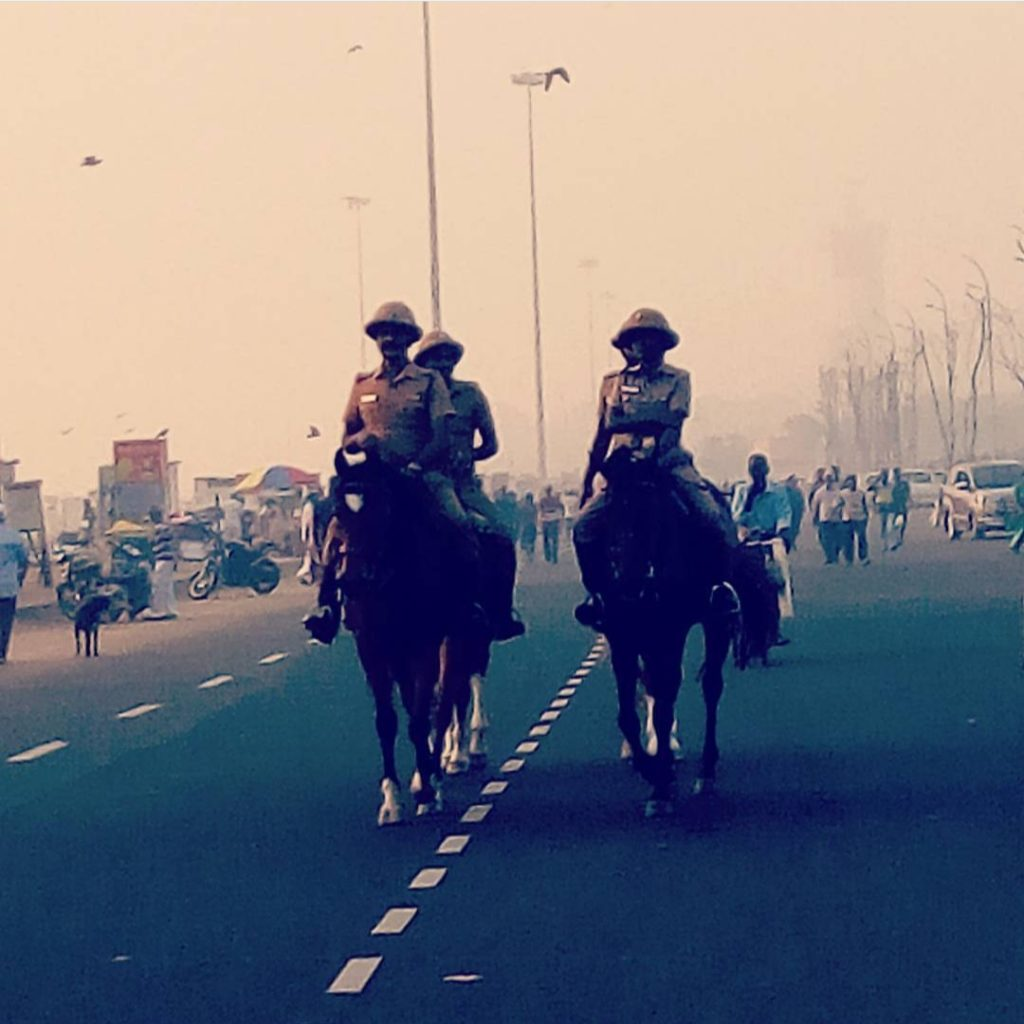 Mounted Branch of Greater Chennai City Police