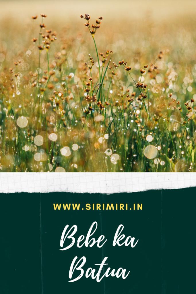 Bebe-ka-Batua-Sirimiri_blogchatterhalfmarathon